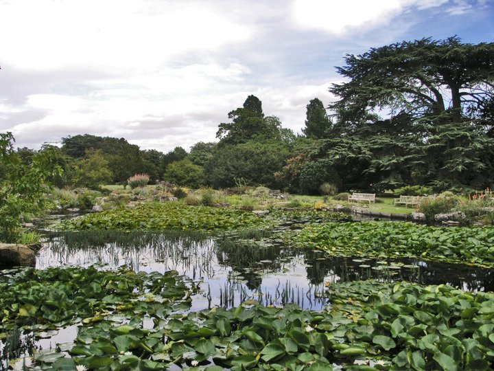 cambridge_university_botanic_gardens